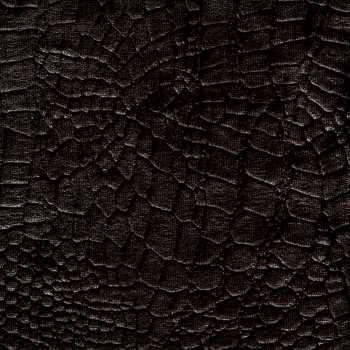 Velvet Black Snake